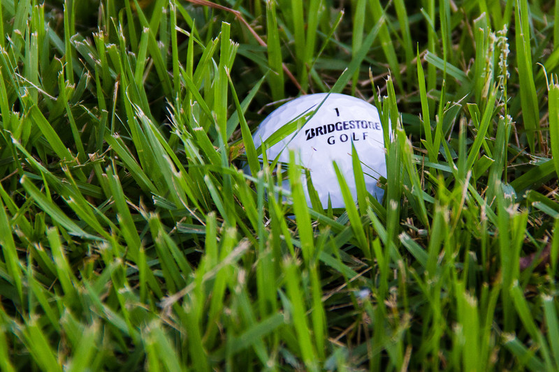 "09-03-2013<br /> ""Trying to Hide""<br /> <br /> If I played golf, I'm sure I would be looking for balls that were trying to hide. :)<br /> <br /> Thanks for your comments and critiques.<br /> Donna"
